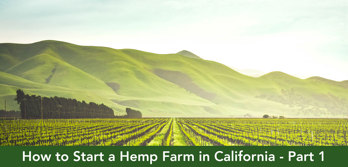 How to Start a Hemp Farm in California - Part 1 - CALIFORNIA